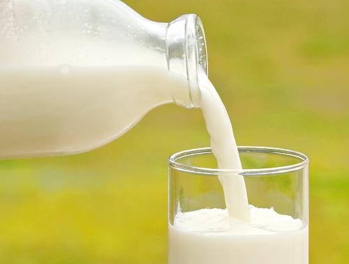 ご存知ですか?牛乳にはこんなに種類があります!
